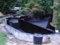 backyard koi pond kits  Design and Ideas