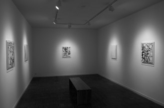 installation view, Aura, 2013