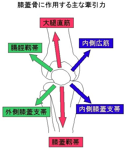 膝のお皿の変位