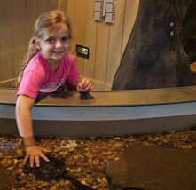 Young visitor enjoys the turgle pond, one of the many educational, hands-on exhibits at the Lake Dardanelle State Park.
