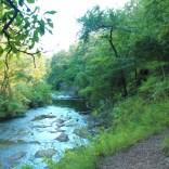 Cedar Creek and Cedar Creek Trail