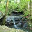 One of the cascades on the small stream that follows the first part of the Cedar Creek Trail.