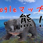 googleマップで熊写った場所はどこ?赤い鮭の名前は?湖の座標も!