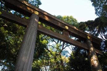 明治神宮(東京)付近のおすすめ駐車場は?初詣の混雑状況は?