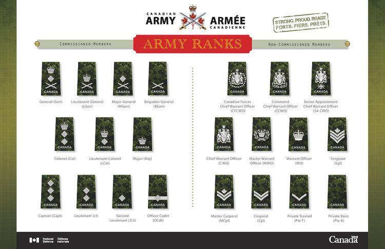 Canadian Army Rank Insignia - Armyca Wiki