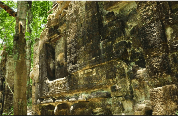 Mayan ruins in Mexican Jungle