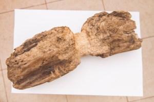 kuzkin hlam (7)
