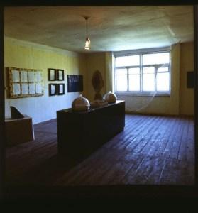 Рыбная выставка, экспозиция в музее МАНИ, дача Николая Паникткова, 1990