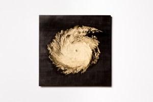 Александр Плюснин. Ураган Эндрю. 2016. Фото: Александр Минченко