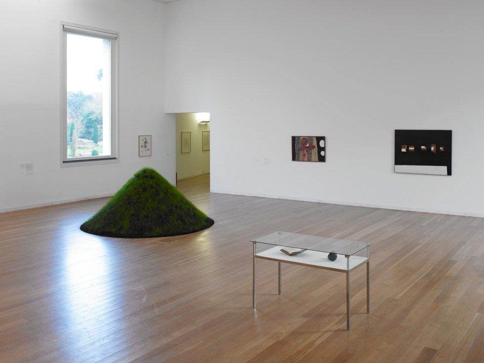 Serralves 2015 Can the Museum be a Garden photo by Filipe Braga © Serralves (1)