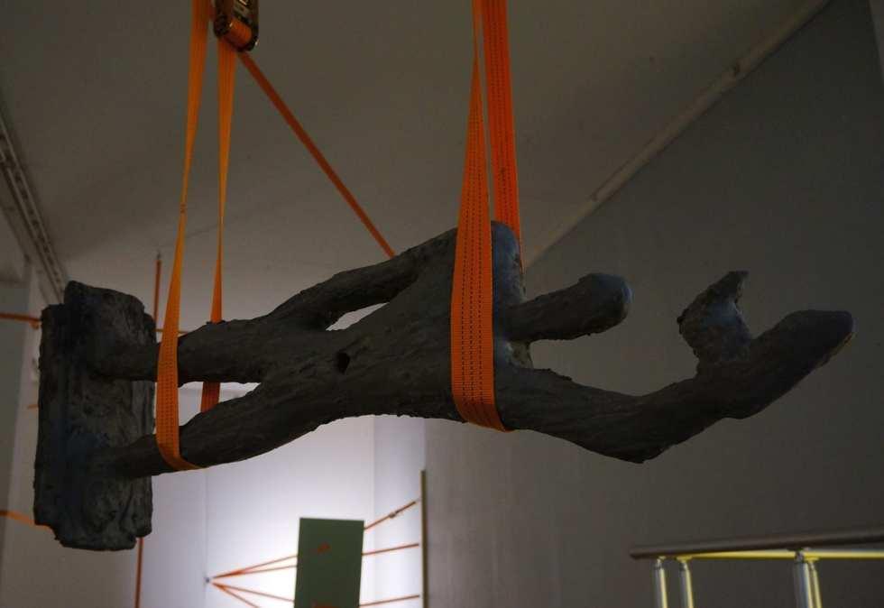 zip-line-09344