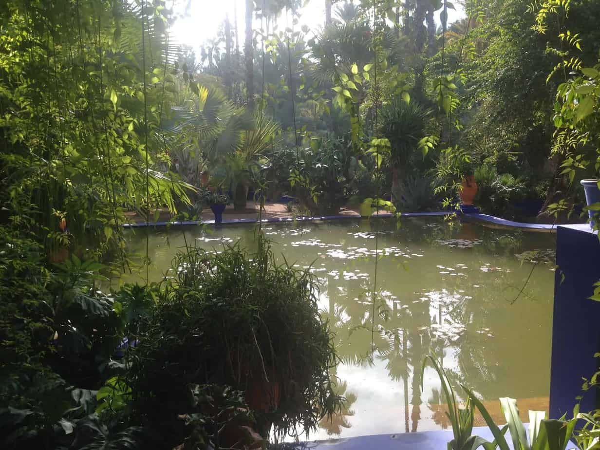 But Jardin A Perfect 24 Hours In Marrakech With The Jardin Majorelle Around