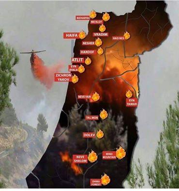 palestine-feux
