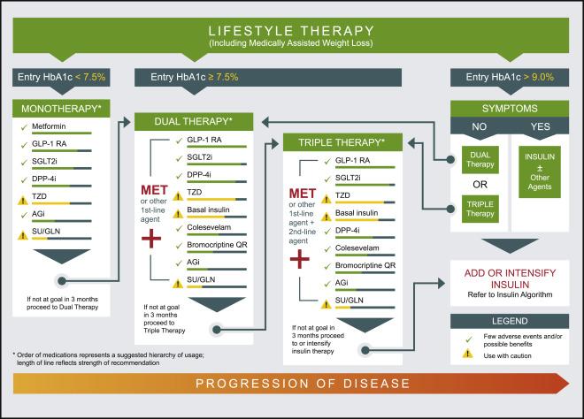 Pharmacologic Management of Type 2 Diabetes Mellitus Available