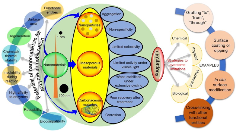 Chemical, physical, and biological coordination An interplay
