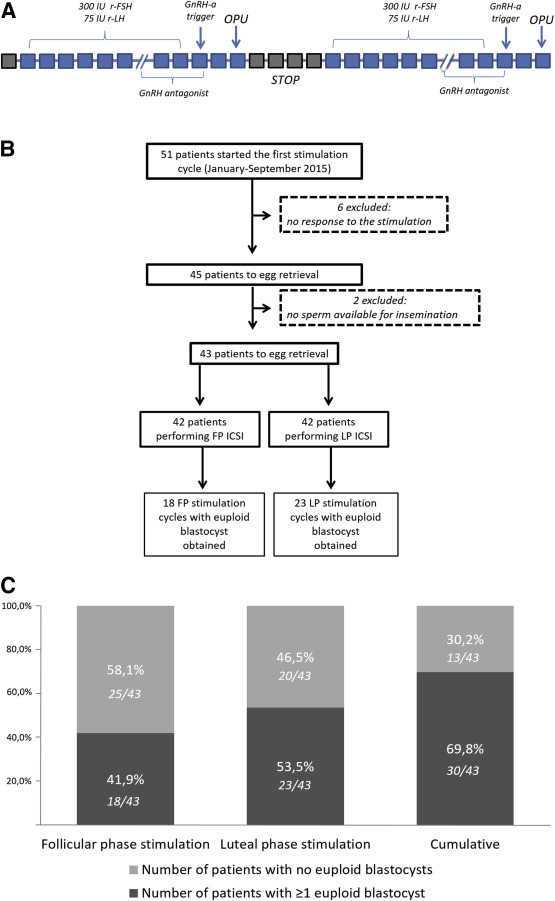 Follicular versus luteal phase ovarian stimulation during the same
