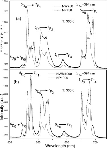 Spectroscopic properties and Judd\u2013Ofelt analysis of Eu3+ doped GdPO4
