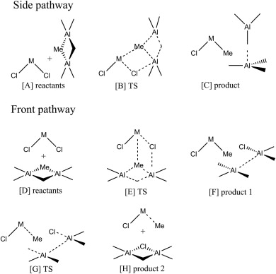 Alkylation and activation of metallocene polymerization catalysts by