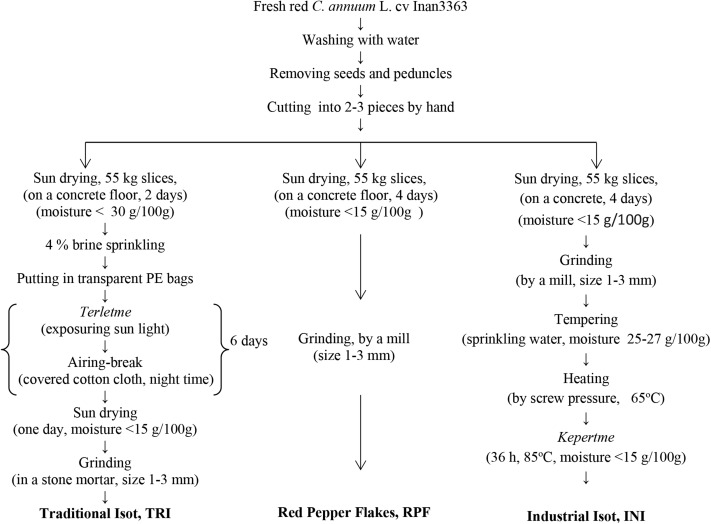 Evaluation of the volatile compounds of fresh ripened Capsicum