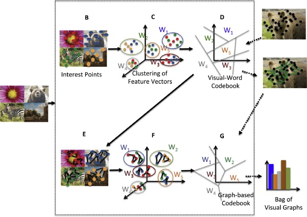 Graph-based bag-of-words for classification - ScienceDirect