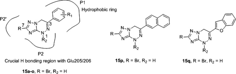 Design, synthesis and anti-diabetic activity of triazolotriazine