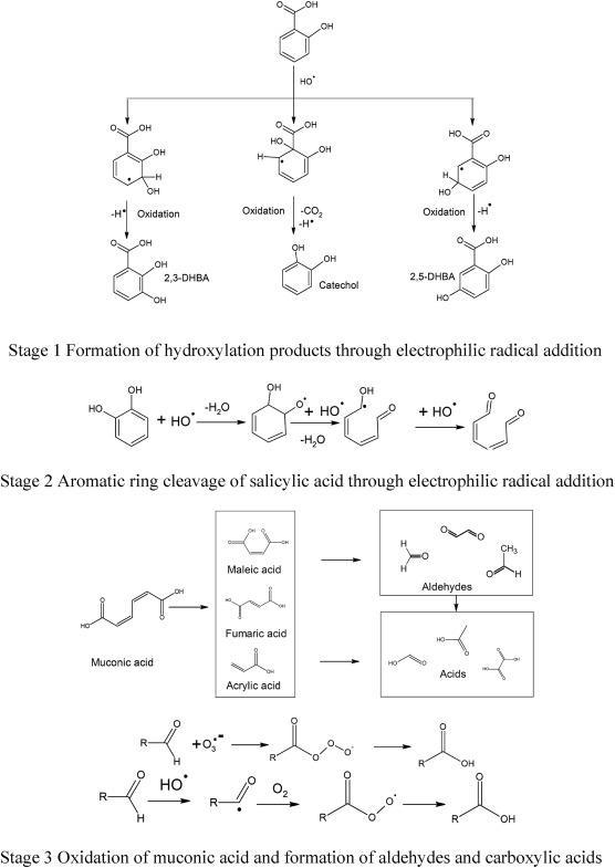 Study on the kinetics and transformation products of salicylic acid