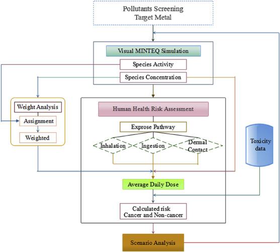 Establishing a human health risk assessment methodology for metal