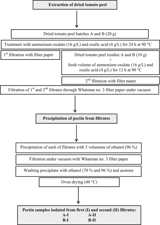 Utilization of tomato peel waste from canning factory as a potential