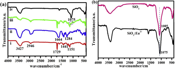 Luminescence properties and Judd\u2013Ofelt analysis of SiO2Ln3+ (Eu, Tb