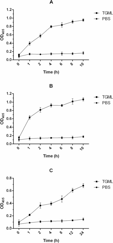 Antimicrobial activity and action mechanism of triglycerol