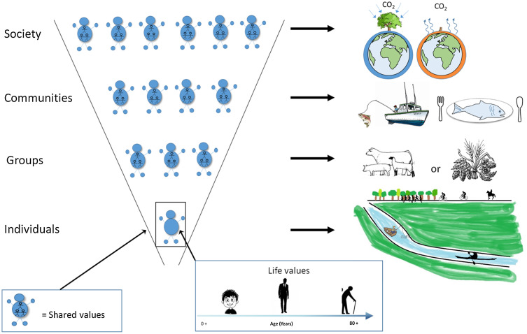 The challenge of valuing ecosystem services that have no material