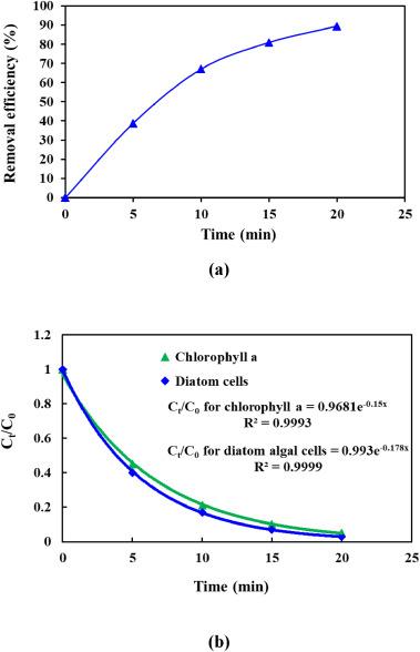 Removal of diatom Nitzschia sp cells via ozonation process