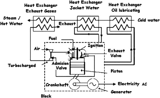 Electricity, hot water and cold water production from biomass
