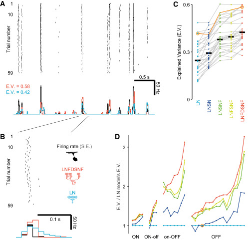 Neural Circuit Inference from Function to Structure - ScienceDirect