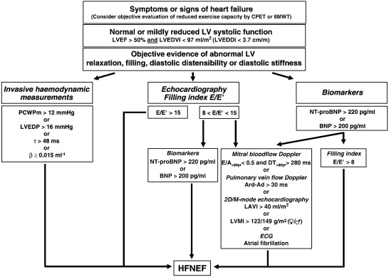 Heart Failure With Normal Left Ventricular Ejection Fraction What