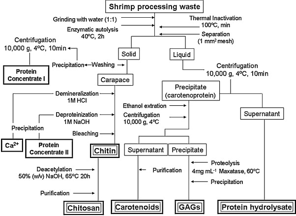 Recovery of protein, chitin, carotenoids and glycosaminoglycans from