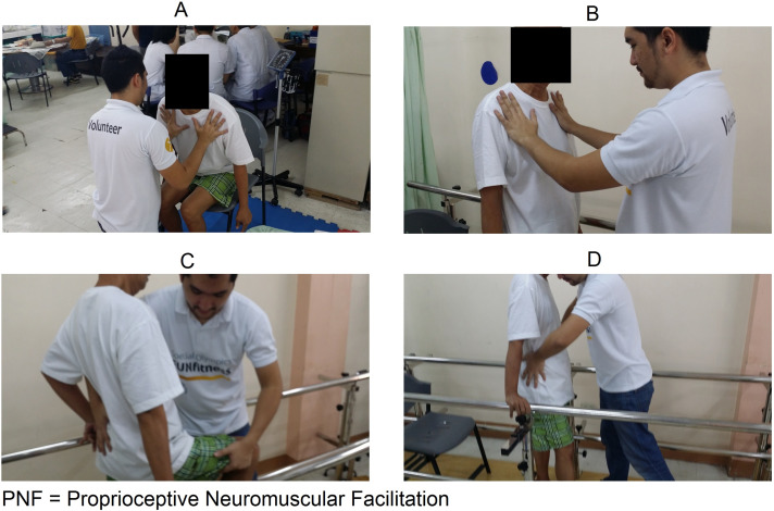 Effects of proprioceptive neuromuscular facilitation on balance