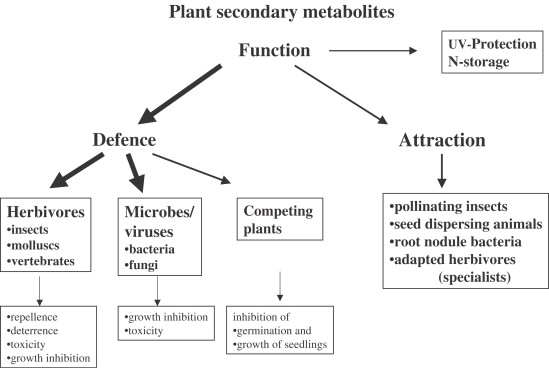 Chapter 11 Importance of plant secondary metabolites for protection