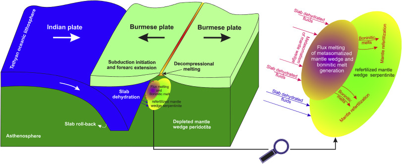 Geochemical cycling during subduction initiation Evidence from