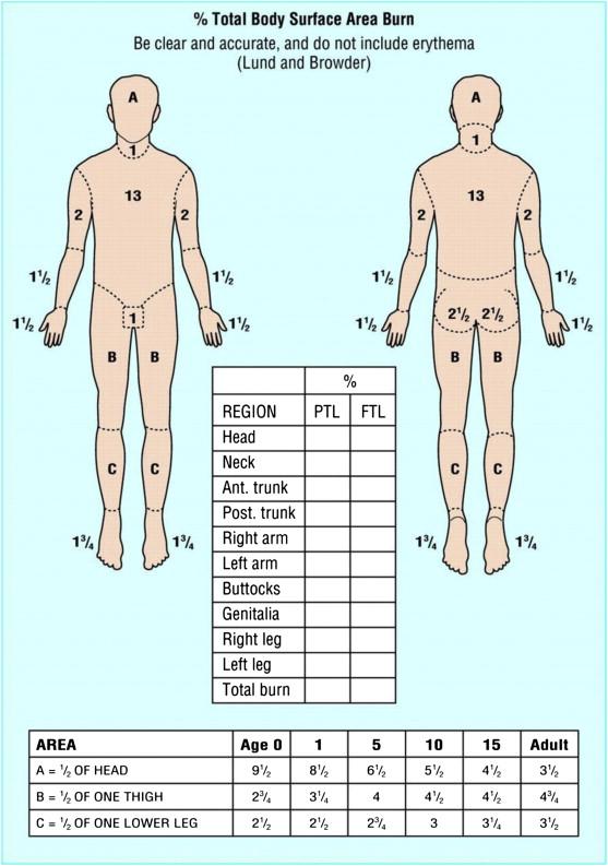 Early management of paediatric burn injuries - ScienceDirect