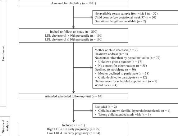 LDL cholesterol in early pregnancy and offspring cardiovascular