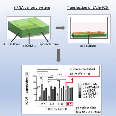 An Atelocollagen Coating for Efficient Local Gene Silencing by Using