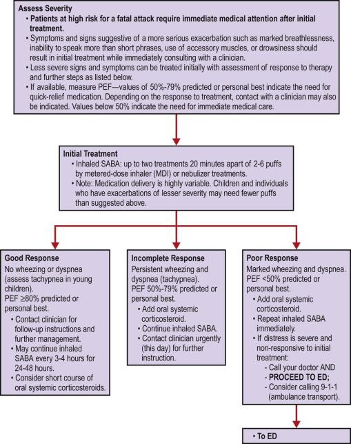 Asthma - ScienceDirect