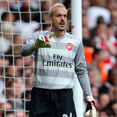 Manuel Almunia is out with a thumb injury