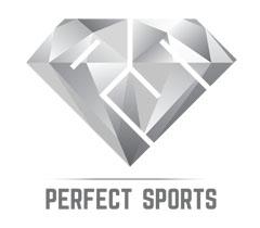 Perfect_logo