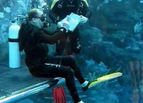 Художник под водой