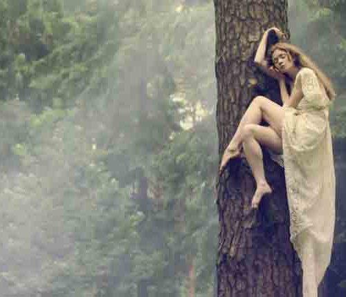 katerina-plotnikova-on-tree