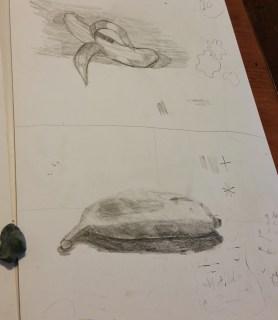 Observation Sketching