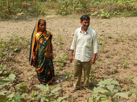Man and Wife Team in Bangladesh---Making a Living, Working Together