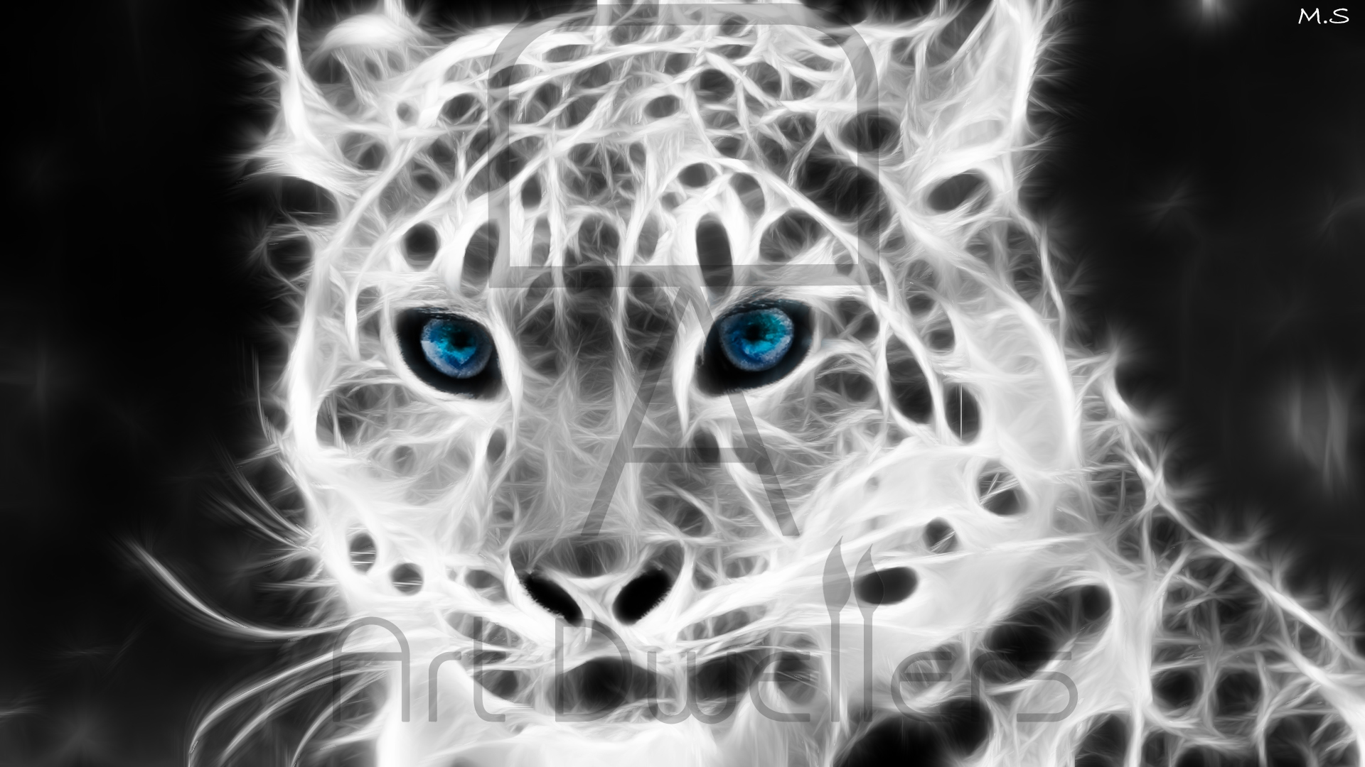 3d Black Jaguar Wallpaper Snow Leopard Art Dwellers
